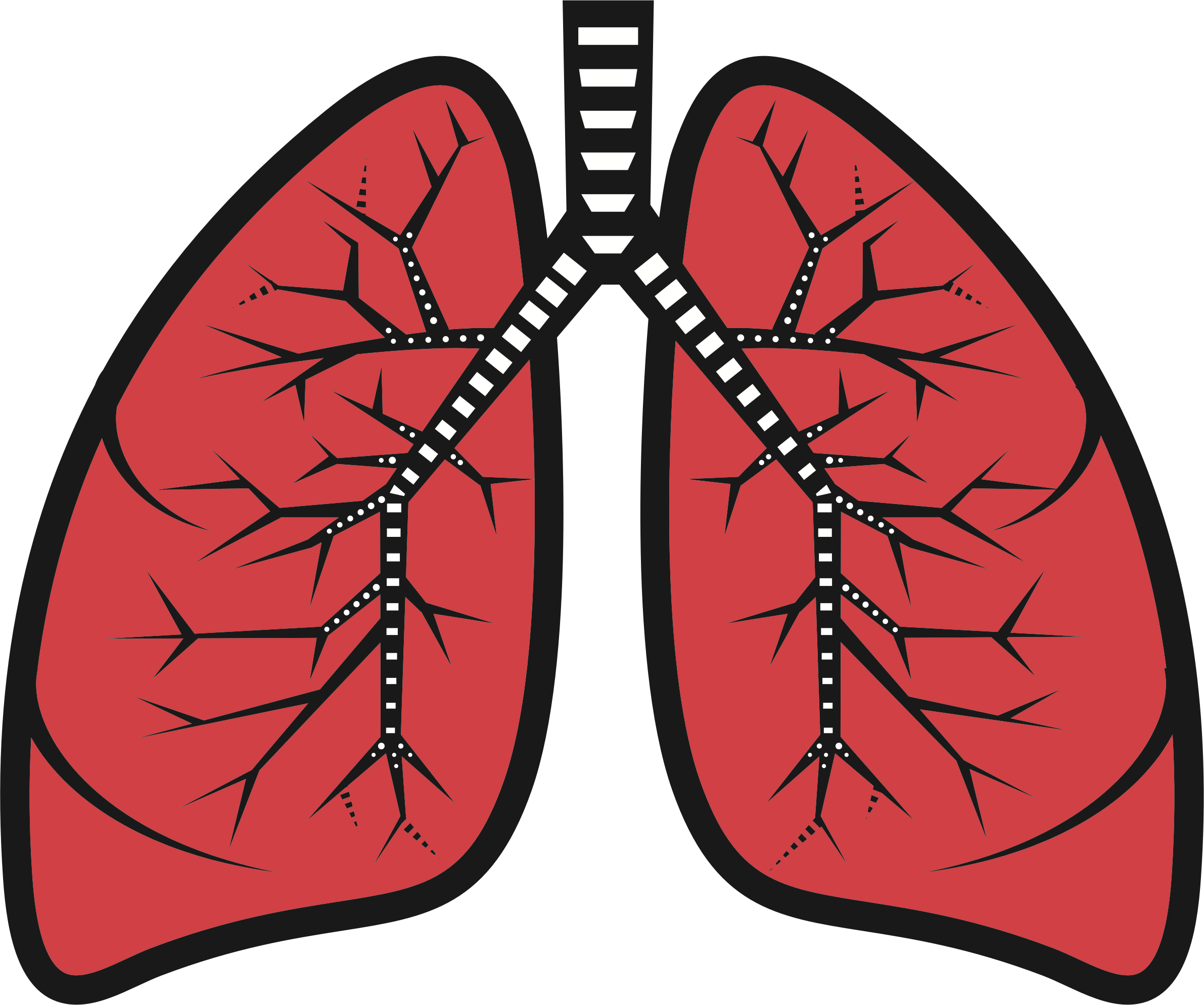 Heart surgery clipart jpg free stock Lung Clip art - lungs surgery 2382*1988 transprent Png Free Download ... jpg free stock