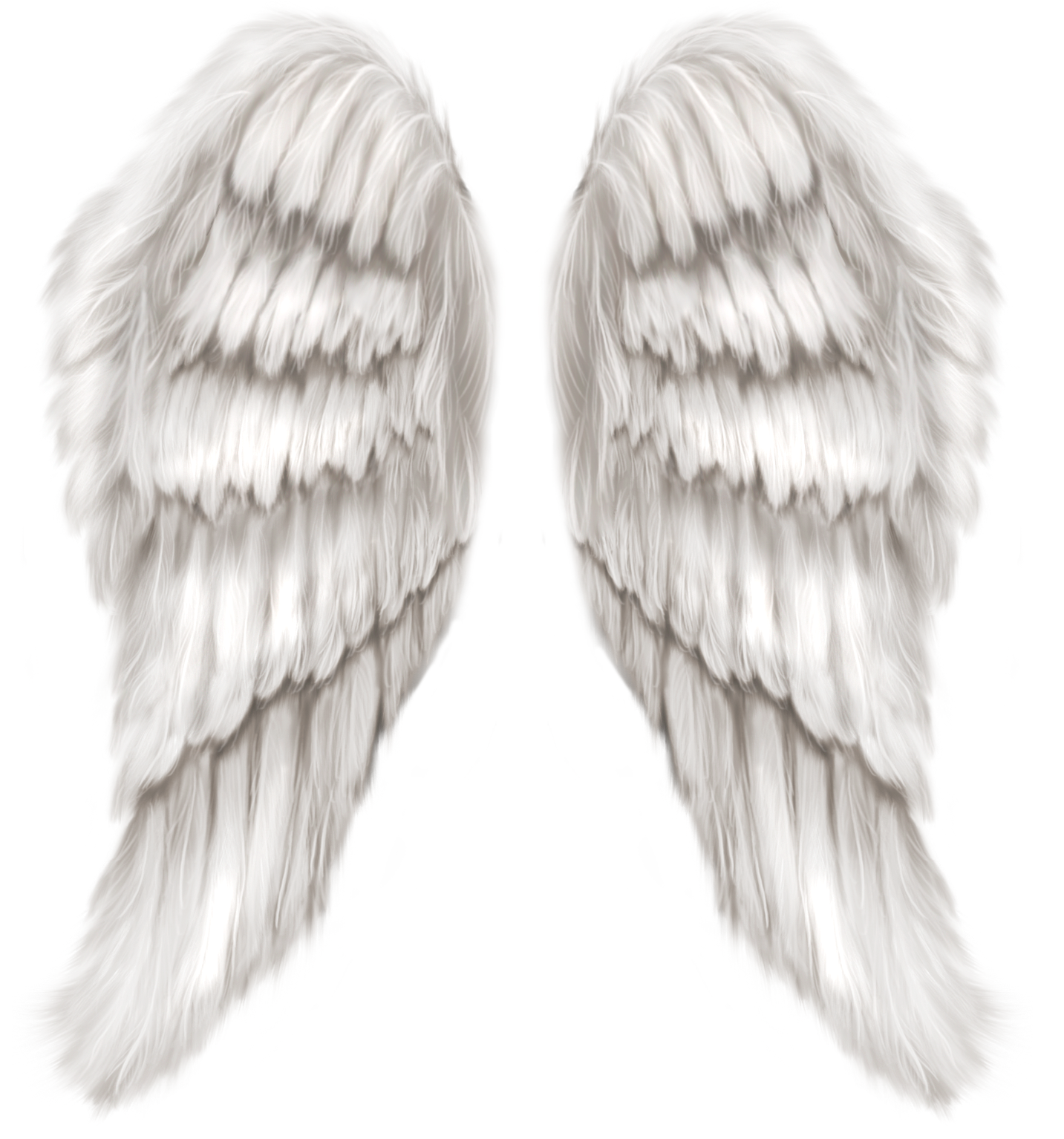 Heart with wings clipart black and white picture black and white download White Angel Wings Transparent PNG Clip Art Image | Gallery ... picture black and white download