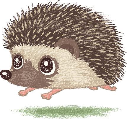 Hedgehog clipart pictures clip art transparent library Free Hedgehog Outline Cliparts, Download Free Clip Art, Free ... clip art transparent library