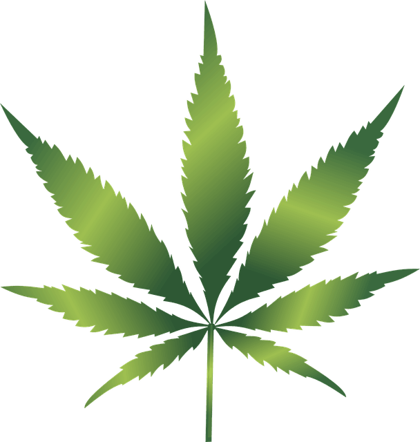 Hemp leaf clipart picture library library Hemp leaf clipart images gallery for free download | MyReal clip art ... picture library library