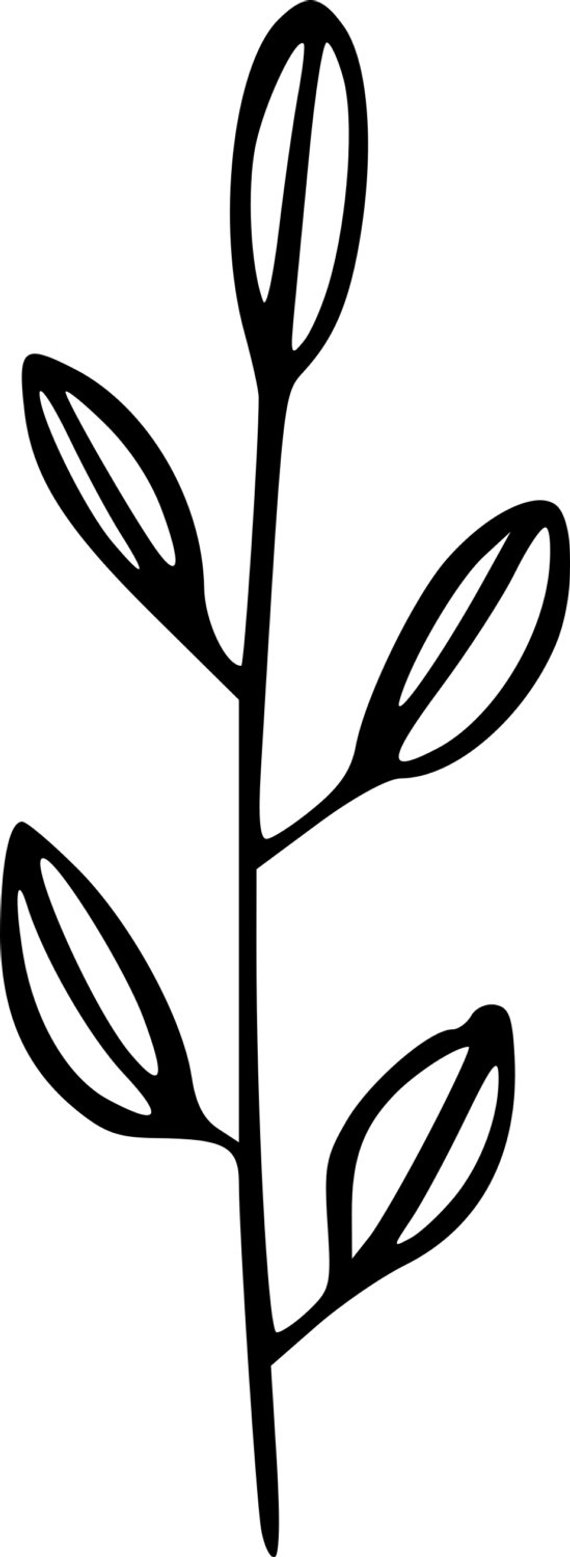 Herbs clipart black and white graphic stock Herbs Clipart Black And White (103+ images in Collection) Page 2 graphic stock