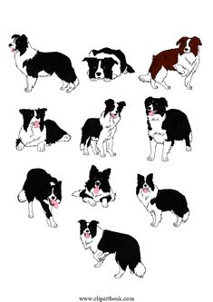 Herding border collie silhouette black and white clipart clip art royalty free stock 615 Best Border collie art images in 2019 | Border collie art ... clip art royalty free stock