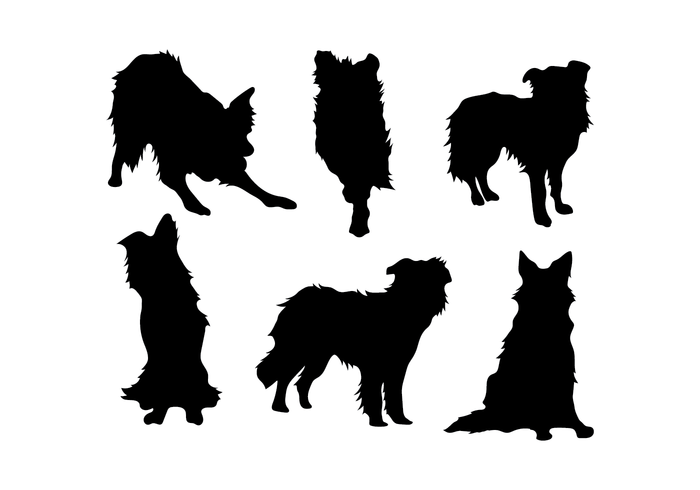 Herding border collie silhouette black and white clipart png freeuse library Border Collie Vector - Download Free Vector Art, Stock Graphics & Images png freeuse library