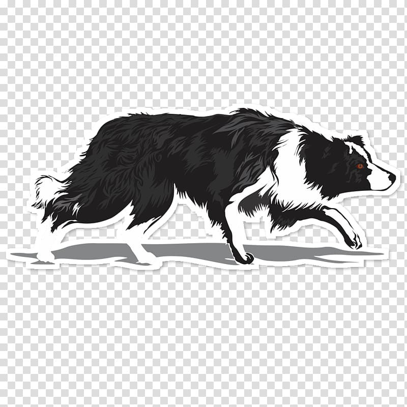 Herding border collie silhouette black and white clipart picture freeuse download Border Collie Rough Collie Dog breed Chihuahua Herding dog, border ... picture freeuse download