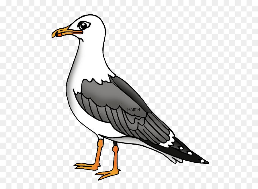 Herring gull clipart clip art transparent download Bird Wing png download - 594*648 - Free Transparent Gulls png Download. clip art transparent download