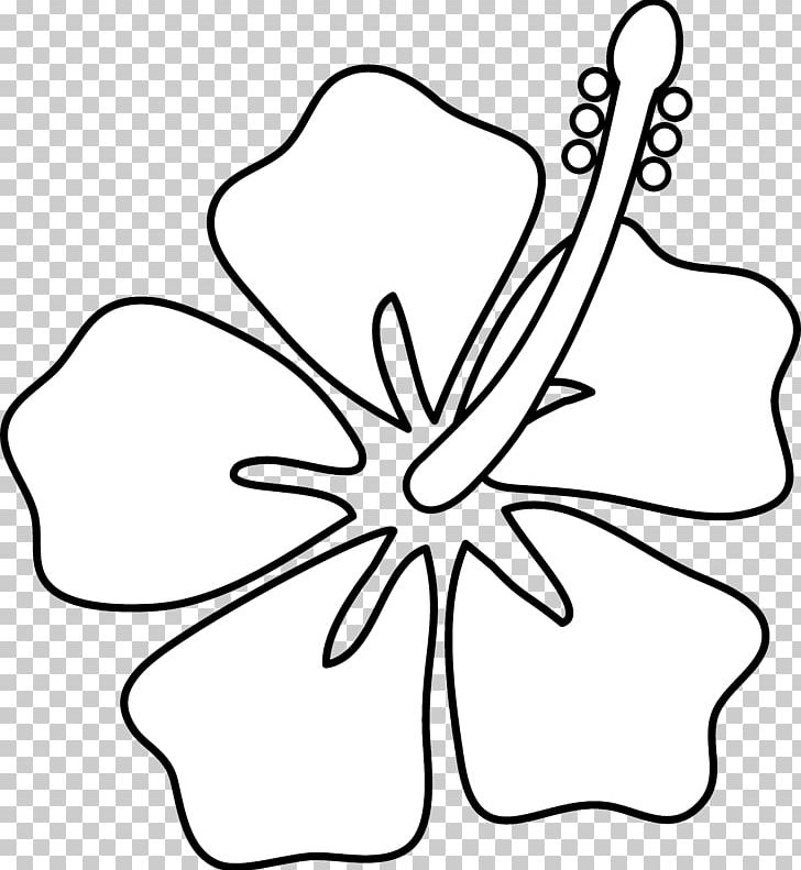 Hibiscus flower clipart black and white lineart clipart transparent stock Hawaii Drawing Hibiscus Flower PNG, Clipart, Art, Art Museum, Black ... clipart transparent stock