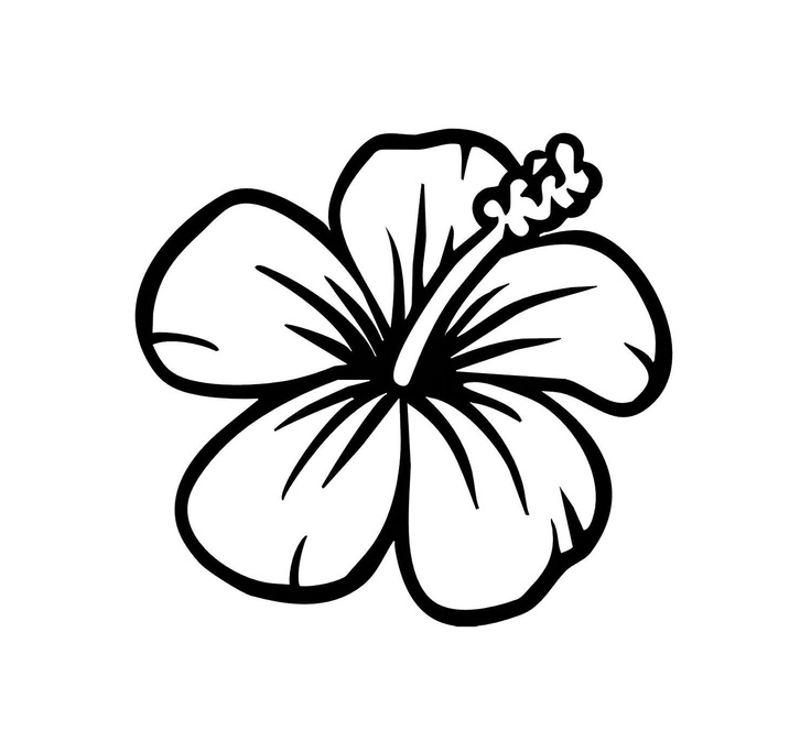 Hibiscus flower clipart black and white lineart clipart free library Free Black And White Hibiscus, Download Free Clip Art, Free Clip Art ... clipart free library