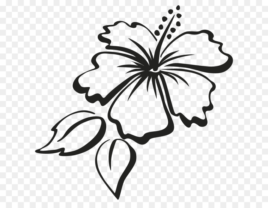 Hibiscus flower clipart black and white lineart vector freeuse stock Black And White Flower png download - 700*690 - Free Transparent ... vector freeuse stock