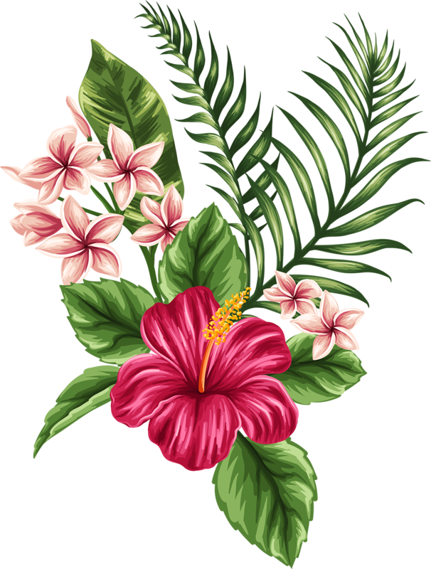 Hibiscus flower drawing clipart freeuse library 0_a04cb_8beba5ab_orig.png | Pinterest | Tattoo, Tatting and Flowers freeuse library