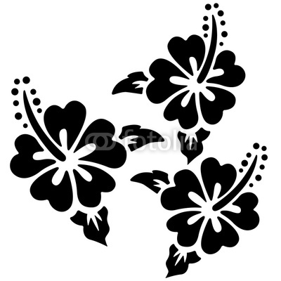 Hibiscus flowers vector art free banner transparent stock 17 Best images about FLOWERS ~ HIBISCUS on Pinterest | Clip art ... banner transparent stock