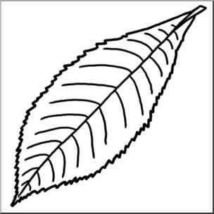 Hickory clipart clip royalty free library Clip Art: Leaf: Hickory B&W I abcteach.com | abcteach clip royalty free library