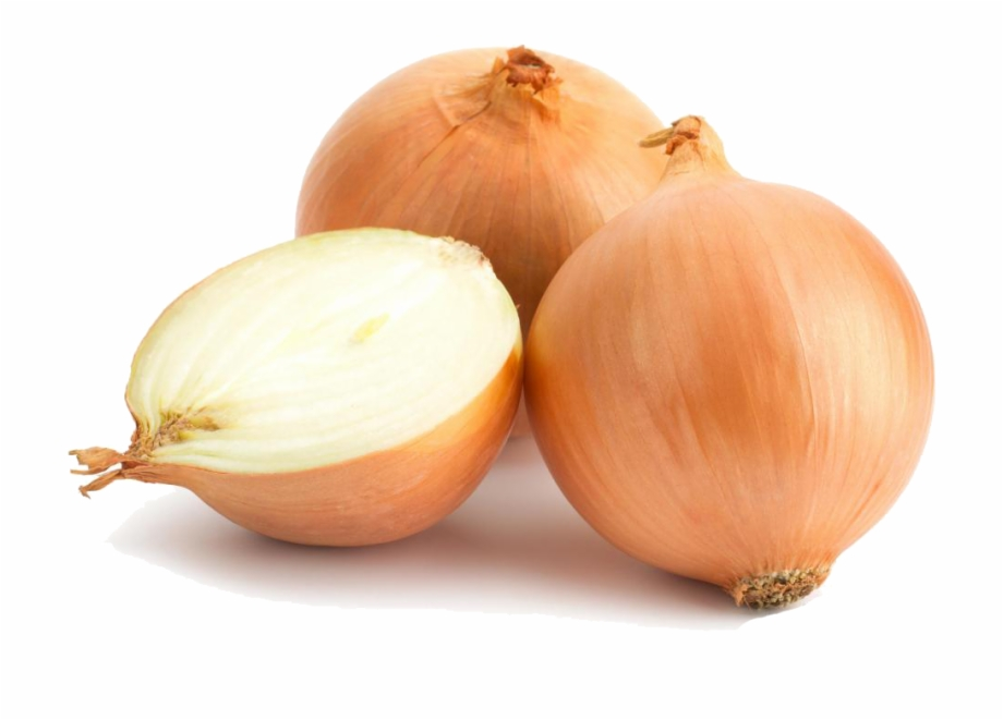 High quality transparent clipart graphic library stock Onion Png High Quality Image Onions With Transparent - Clip Art Library graphic library stock