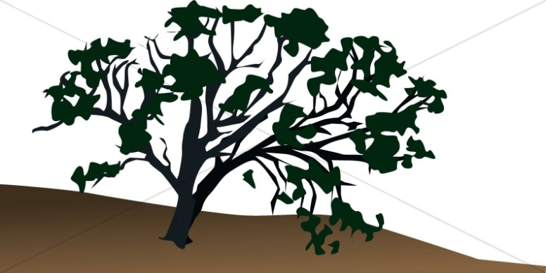 Hillside clipart jpg royalty free library Old Tree on Hillside | Nature Clipart jpg royalty free library