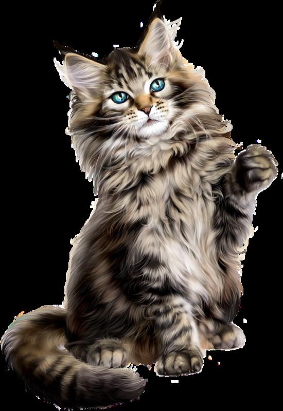 Himalayan persian cat clipart image black and white котята,кошки,cat,gato,Katze,katter,kettir,cait, | Clip art 2 ... image black and white