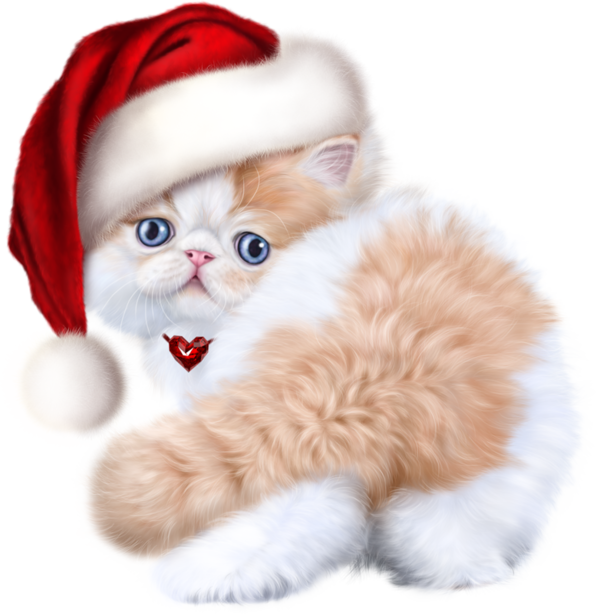 Himalayan persian cat clipart clipart library library TUBES NOEL CHAT | Cat 3D Tubes 2 | Pinterest | Noel clipart library library