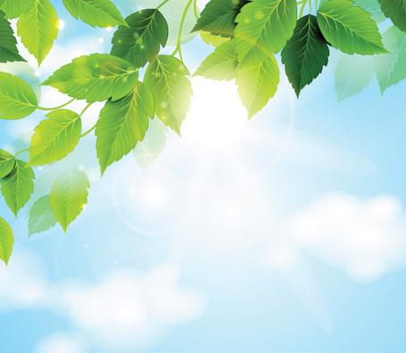 Himmel clipart clip royalty free stock Solig himmel med gröna blad bakgrund (gratis), vektorfiler ... clip royalty free stock