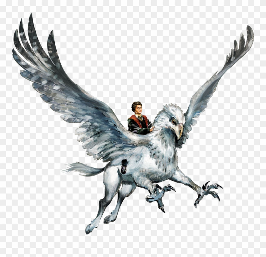 Hippogriff clipart png royalty free Hyppogriff Clipart Harry Potter Hippogriff - Harry Potter ... png royalty free