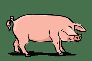 Hog clipart banner library stock Hog clipart 2 » Clipart Portal banner library stock