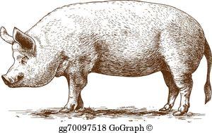 Hog clipart clip free download Hog Clip Art - Royalty Free - GoGraph clip free download