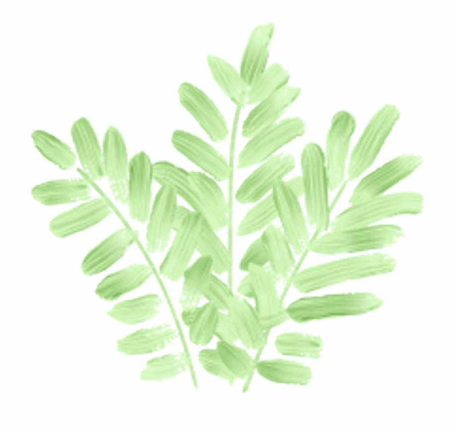 Hojas verdes clipart vector black and white download tumblr #leaves #green #nature #plant #hojas #verde - Fern ... vector black and white download