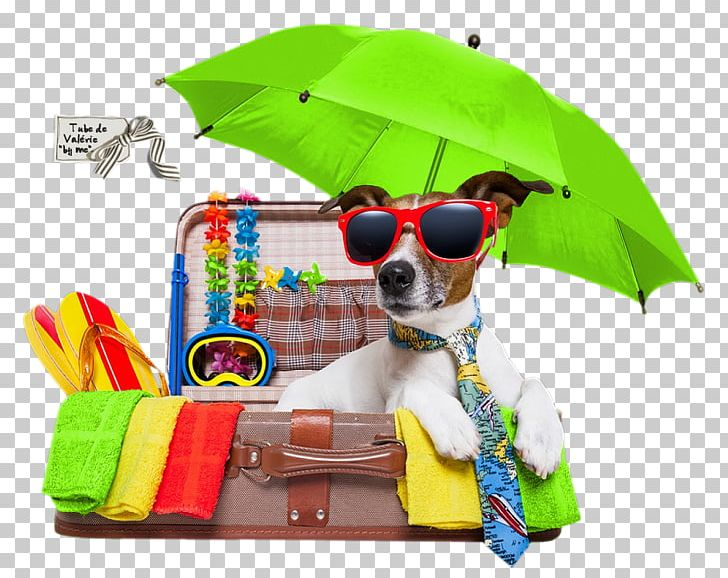 Holiday pet clipart picture freeuse Vacation Jack Russell Terrier Puppy Pet Holiday PNG, Clipart ... picture freeuse