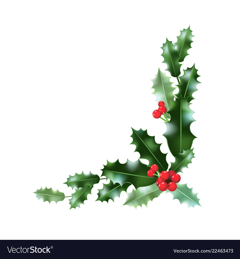 Holly corner clipart image royalty free Holly leaves corner vector image image royalty free