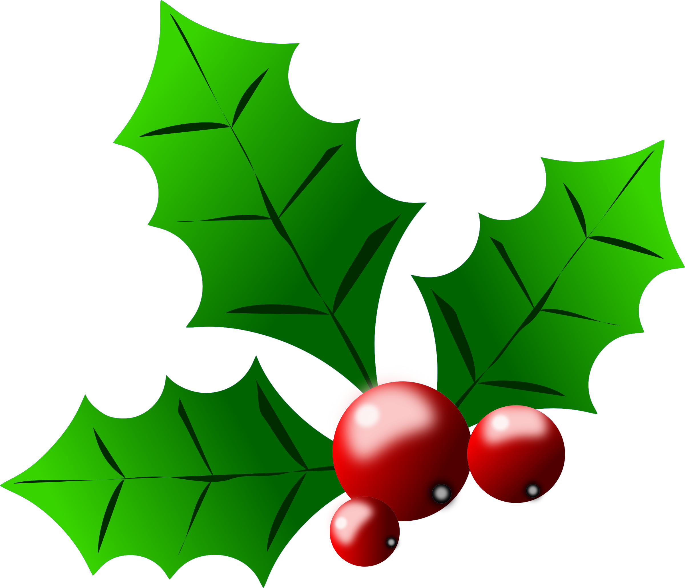 Holly leaves and berries clipart png download holly berries by @Almeidah, A stylized drawing of leaves and ... png download