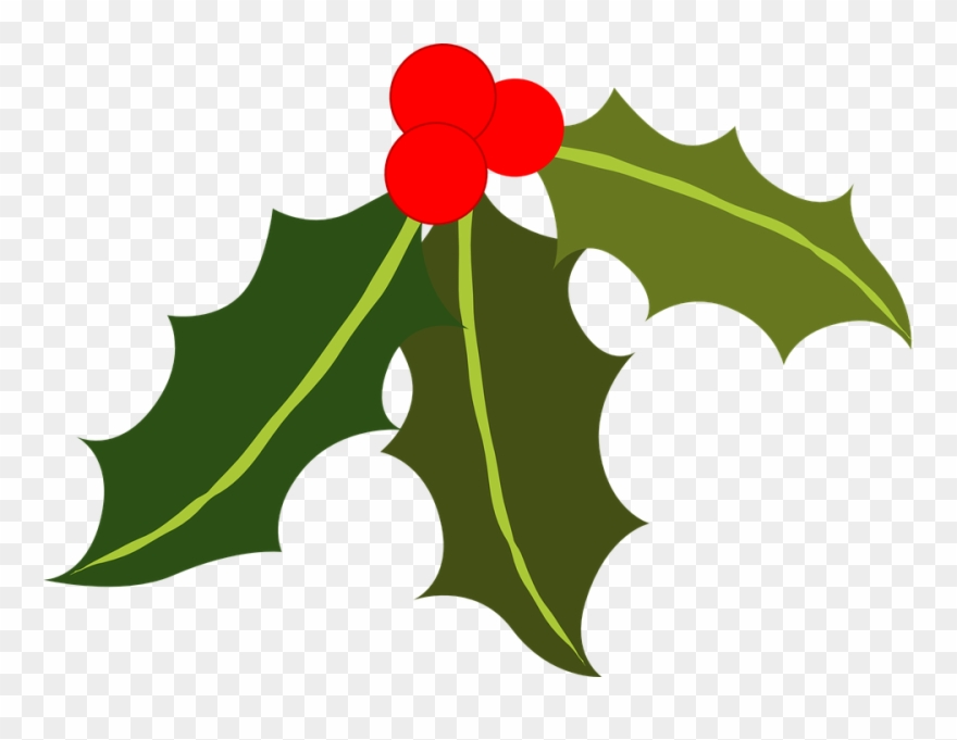 Holly leaves and berries clipart graphic download Holly And Berries Clip Art Collection Of Free Berries ... graphic download