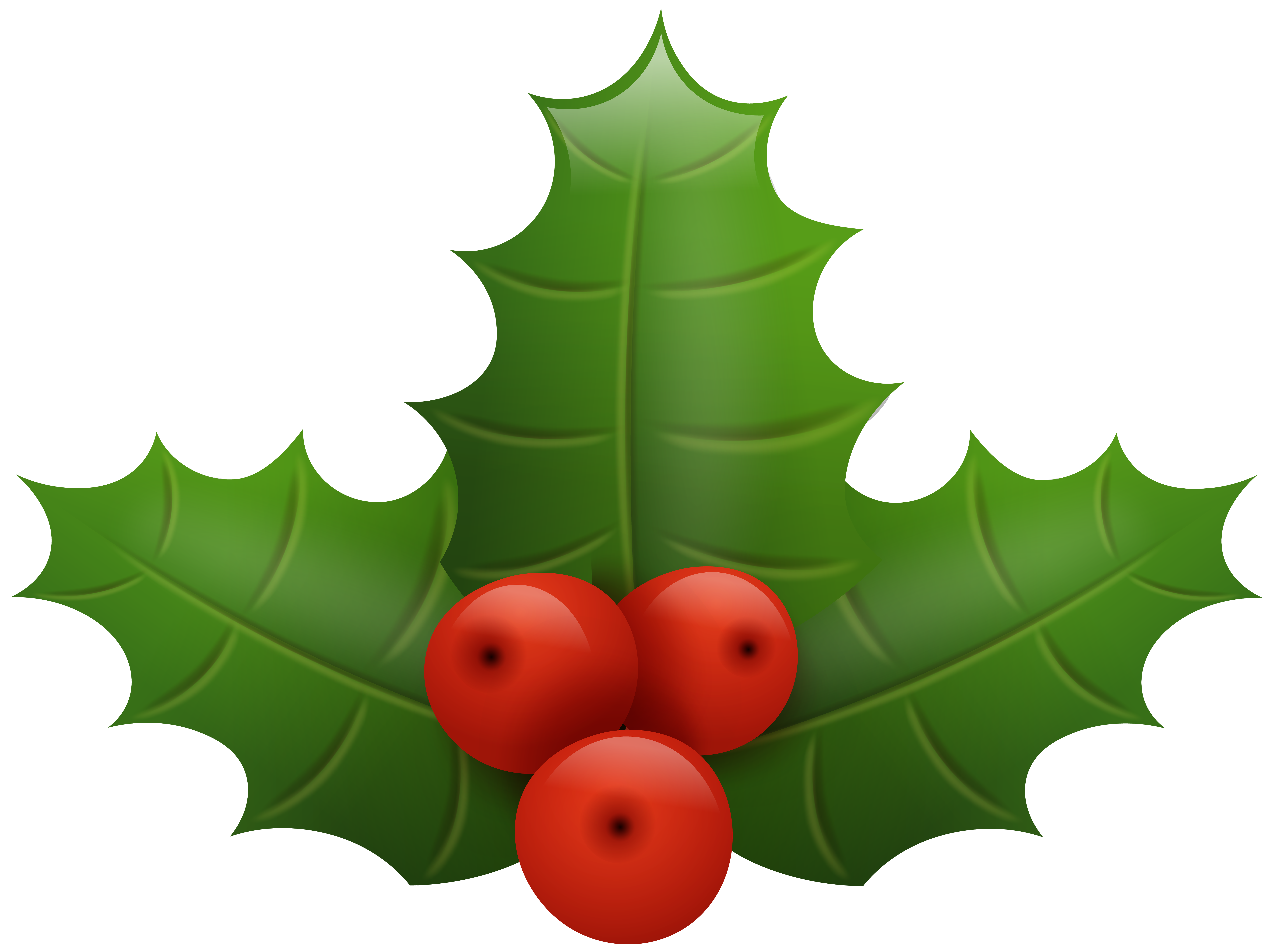 Holly tree clipart picture free Christmas Holly PNG Clip Art Image | Gallery Yopriceville - High ... picture free