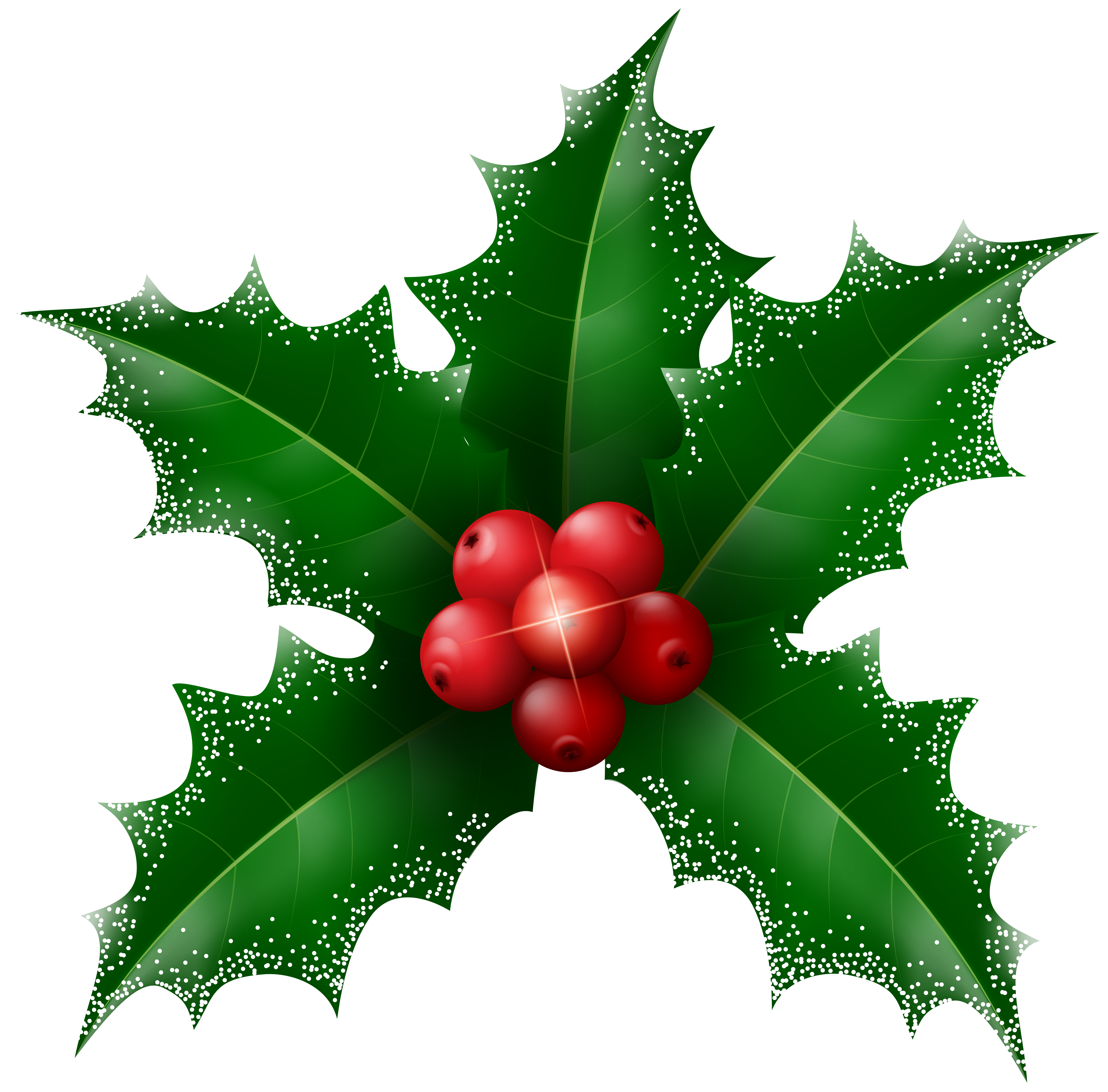 Holly tree clipart graphic Snowy Holly Mistletoe Transparent Clip Art | Gallery Yopriceville ... graphic