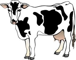Holstein clipart clip transparent library Holstein cow clipart 4 » Clipart Station clip transparent library