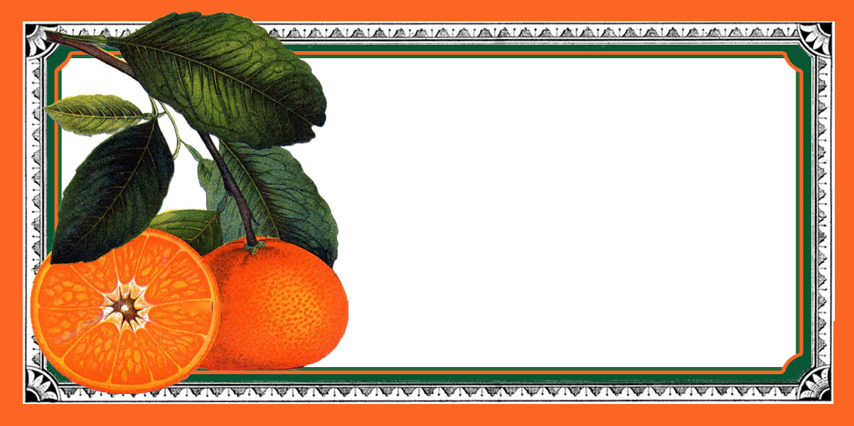 Homemade jam labels clipart png free Free Printable Jam Labels - The Graphics Fairy png free