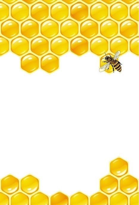 Honeycomb border clipart banner free download HONEYCOMB AND BEE | FRAMES / BORDERS / CORNERS | Bee honeycomb, Bee ... banner free download