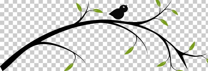 Horizontal branch clipart png transparent library Drawing Branch Tree PNG, Clipart, Art, Artwork, Beak, Bird, Black ... png transparent library