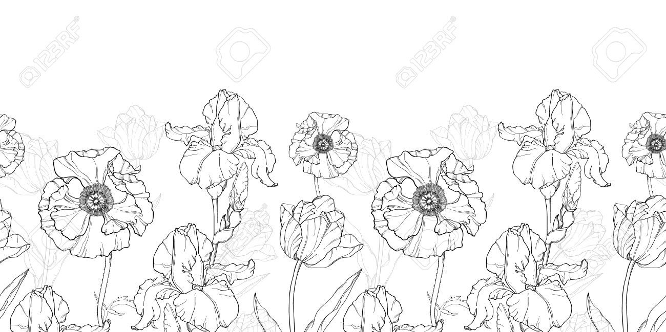Horizontal floral line clipart vector library Stock Vector | Flower Painting | White flowers, Drawings, Black, white vector library