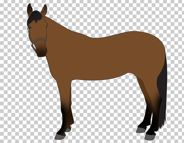 Horse blanket clipart svg transparent stock Mule Pony Stallion Mustang Horse Blanket PNG, Clipart ... svg transparent stock