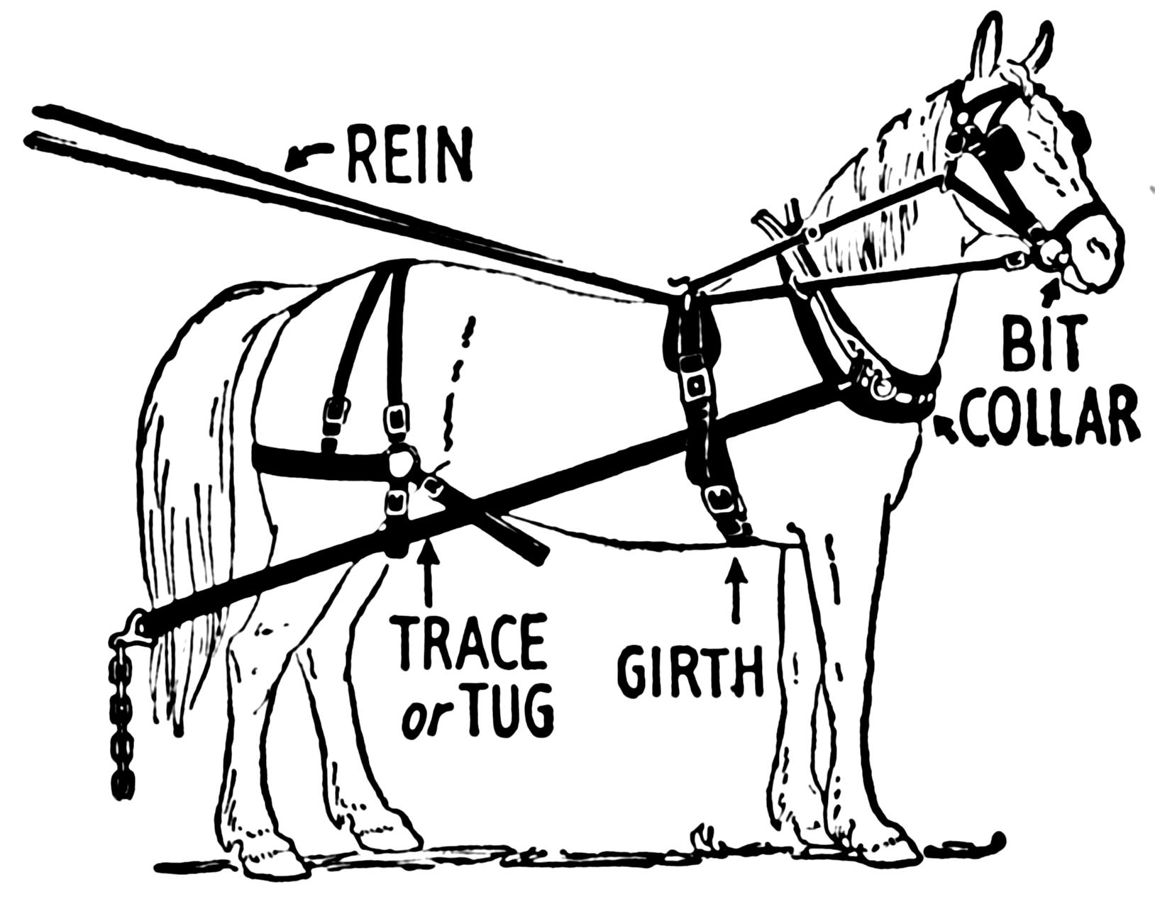 Horse cart clipart farmer bushel line drawing jpg royalty free Horse Tack jpg royalty free
