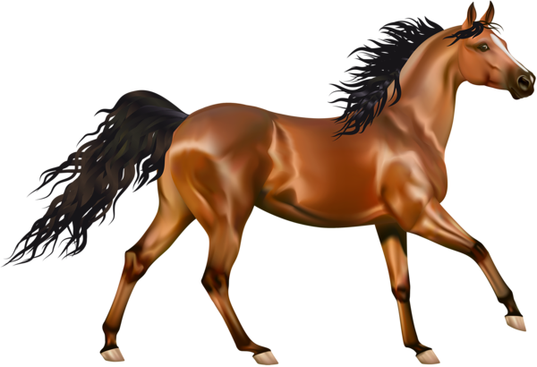 Horse clipart images clipart free download Brown #Horse #Clipart | Horse Clipart | Horse background ... clipart free download