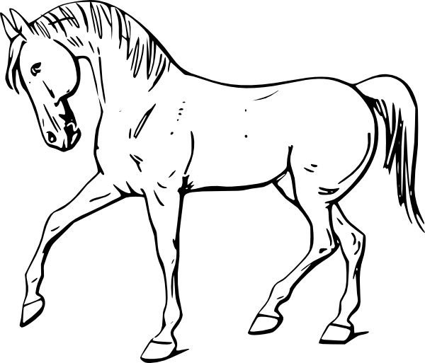 Horse clipart outline clip download Walking Horse Outline clip art Free vector in Open office ... clip download