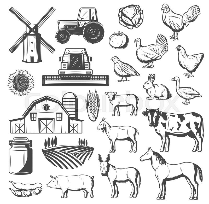 Horse cow tractor sheep clipart black and white graphic transparent Farming, agriculture and cattle icons. ... | Stock vector ... graphic transparent