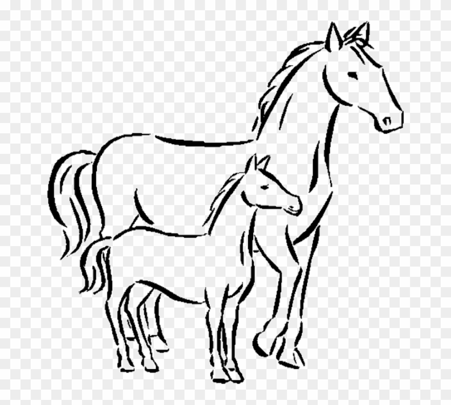 Horse drawing clipart graphic black and white stock Horse - Draw A Small Horse Clipart (#1224267) - PinClipart graphic black and white stock