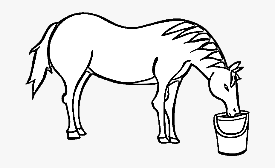 Horse drinking clipart picture transparent stock Clipart Zebra Drinking Water - Horse Drinking Water Drawing ... picture transparent stock