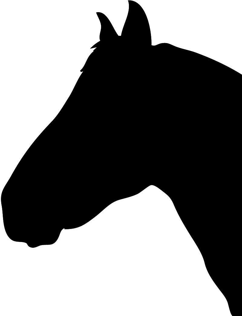 Horse head profile clipart transparent Horse Silhouette - ClipArt Best - ClipArt Best | Horse camp ... transparent