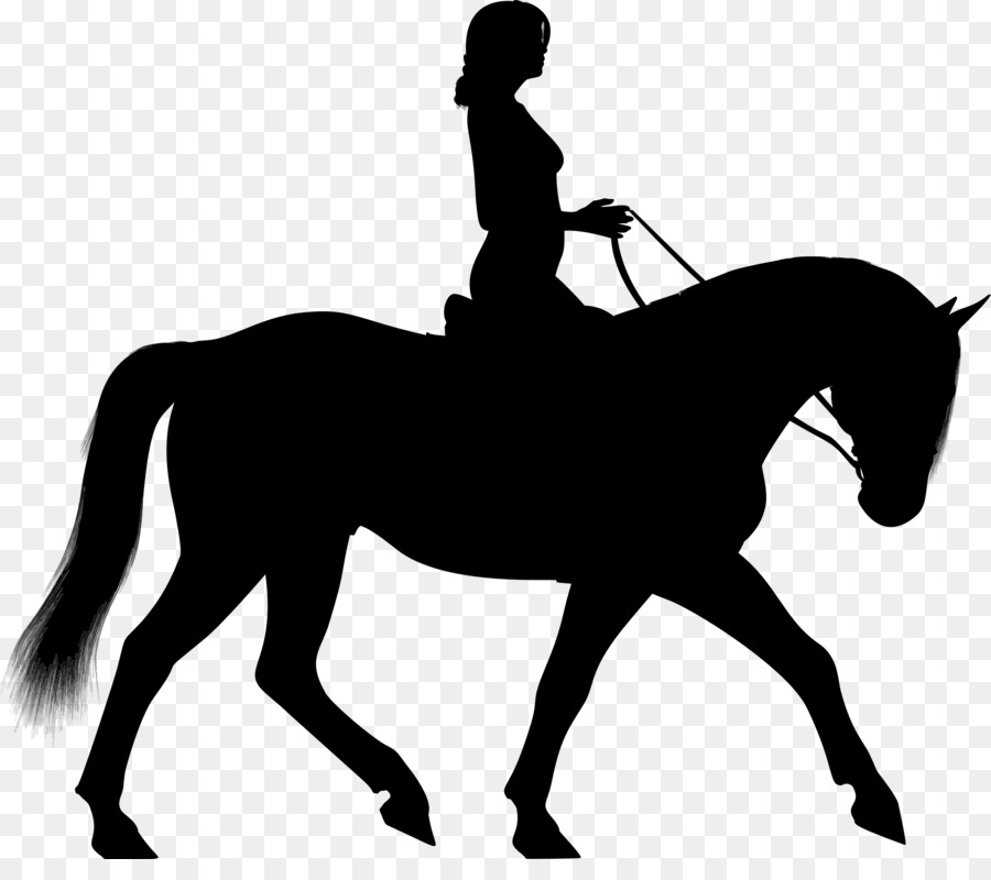 Horseback riding clipart vector black and white download Horse Equestrian Silhouette Clip Art - H #75718 - PNG Images ... vector black and white download