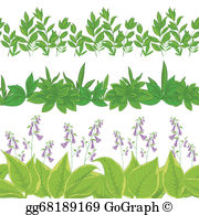 Hosta clipart clipart black and white Hosta Clip Art - Royalty Free - GoGraph clipart black and white