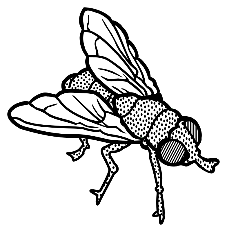 House fly clipart black and white clipart black and white library Clipart - fly - lineart clipart black and white library