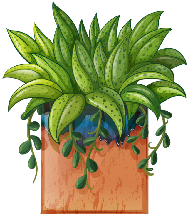 Clip Art of beautiful plants for the spring garden: Plant # 1 ... picture free download