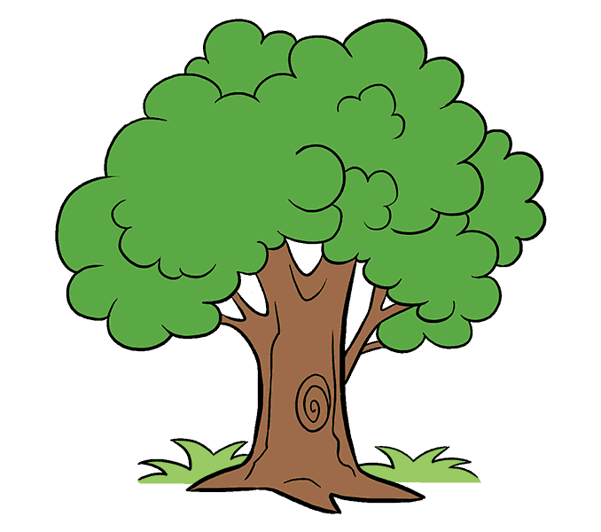 How to draw a tree clipart clipart free Unlimited Cartoon Tree Picture How To Draw A Easy Step By Drawing ... clipart free