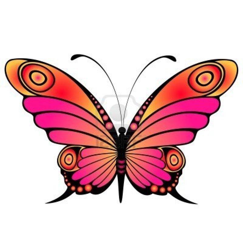 Http www butterflywebsite com clipart butterfly gif clip art freeuse About Butterflies clip art freeuse