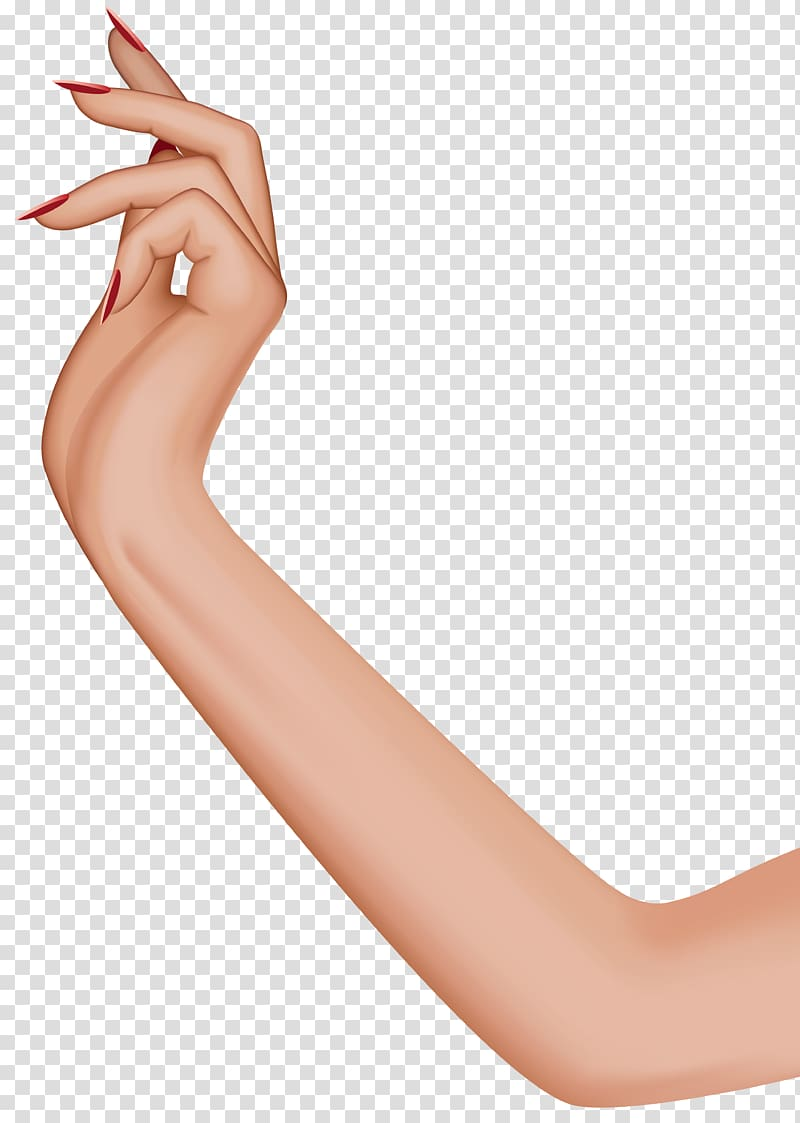 Human arm clipart graphic black and white Hand Arm Human leg , female leg transparent background PNG ... graphic black and white